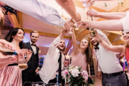231 toast weselny uai