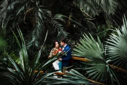 sesja ślubna w palmiarni