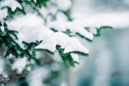 33 zimowa sesja slubna w tatrach 6 uai