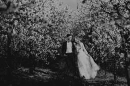 9 wiosenna sesja slubna w sadzie 13 uai