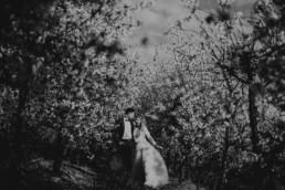 9 wiosenna sesja slubna w sadzie 14 uai